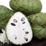Anona exotické ovoce