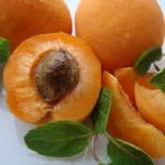 jak pěstovat meruňky