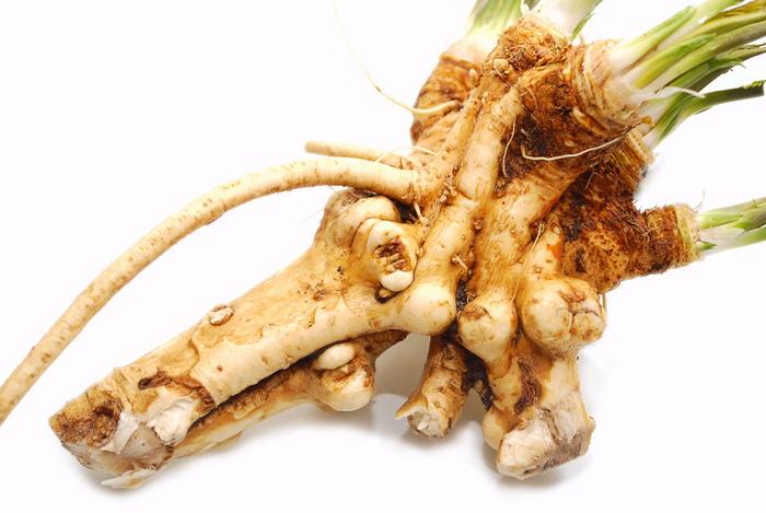 křen a zdraví