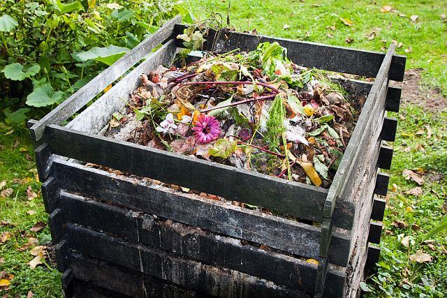 jak na kompost