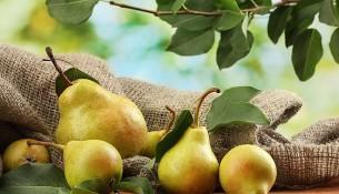 české ovoce