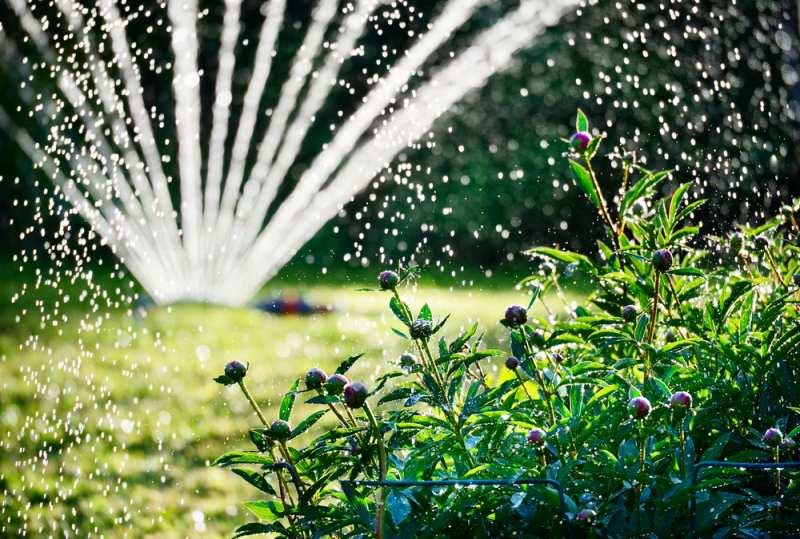 rozvod vody na zahrade